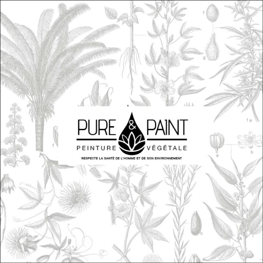 Pure Paint Boutique Sion Libercourt