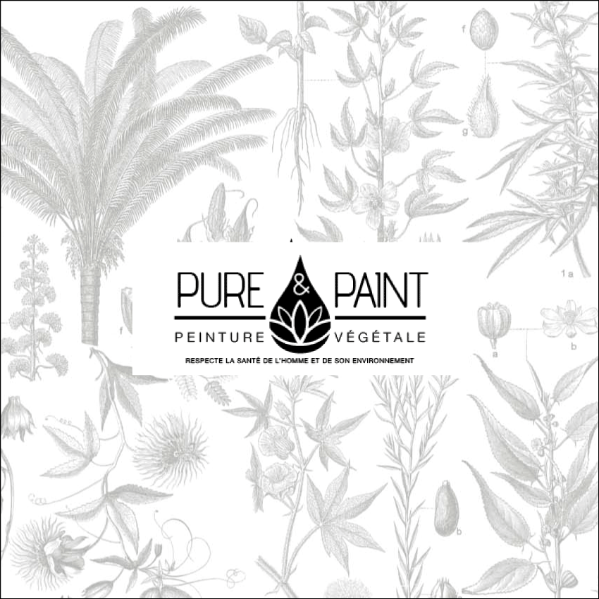 Pure Paint Boutique Sion Linbercourt