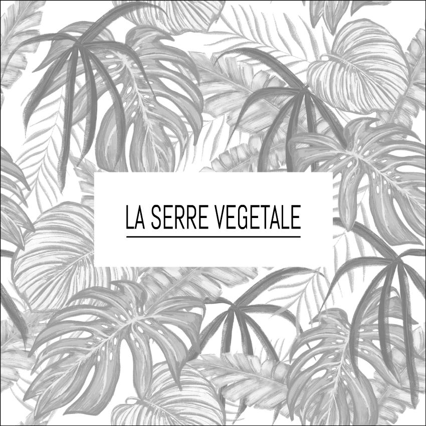 La serre végétale Boutique Sion Libercourt